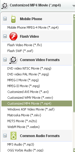 WebM to iMovie Converter Output Profile